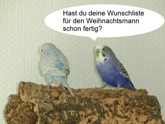 Welli Comic 2