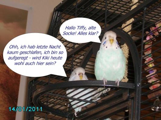 Tiffy und Snoopy