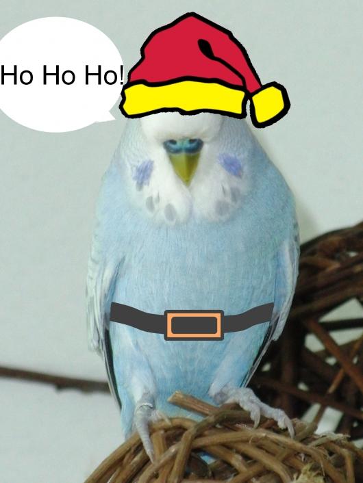 Weihnachtsmann Welli