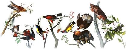 Google Doodle Ornithologe Audubon