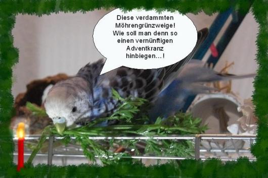 Baileys bastelt einen Adventkranz aus Möhrengrün...