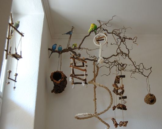 Basteln mit bea der h ngespielplatz wellensittich blog f r alle die - Baum fur wohnzimmer ...