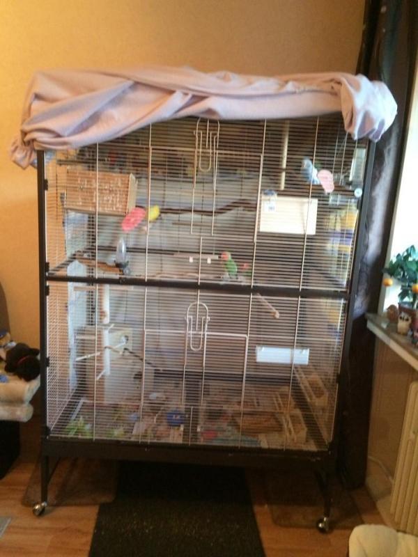 Vogelvoliere weiße Gitter
