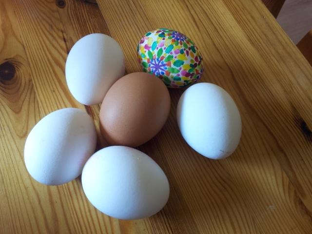 ein bemaltes Ei