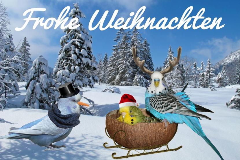 Schlittenfahren Wellis Schneemann-Welli