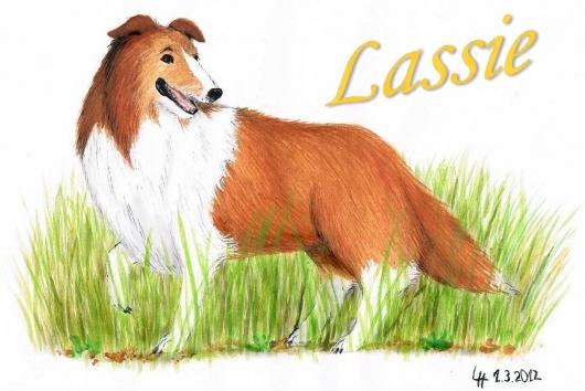 Zeichnung von Collie Lassie