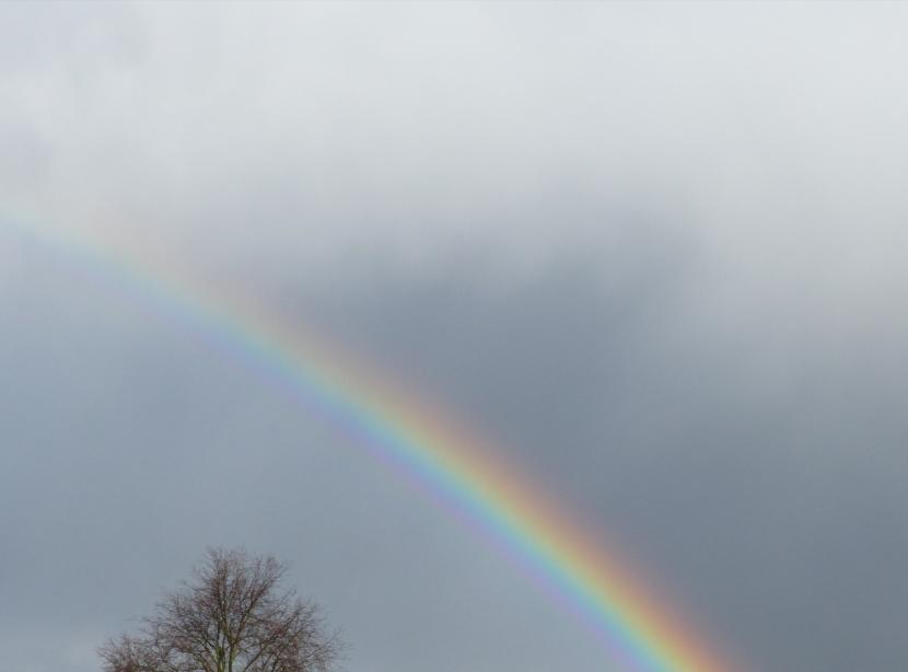 Regenbogen am grauen Himmel