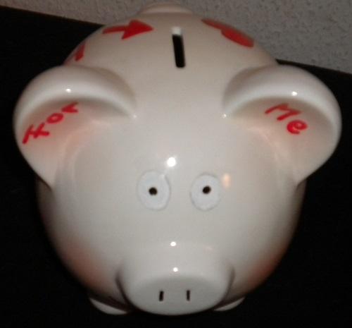 Sparschwein für Tierarztrechnungen