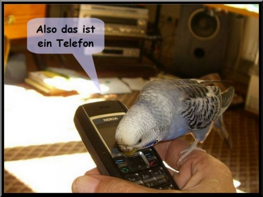 vicky telefon 1