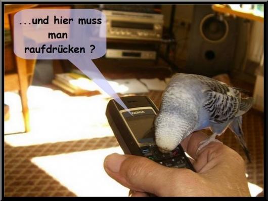 vicky telefon 2