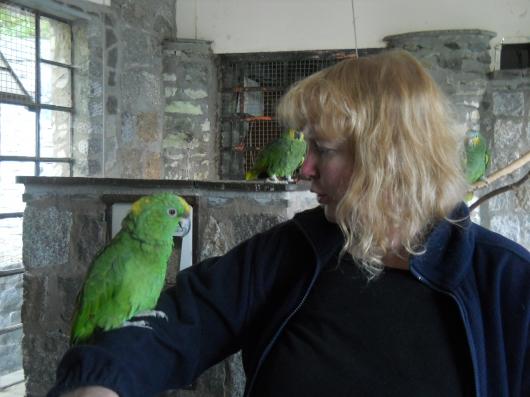 Ich mit Papagei