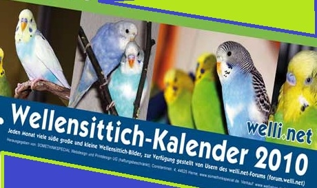wellensittichkalender
