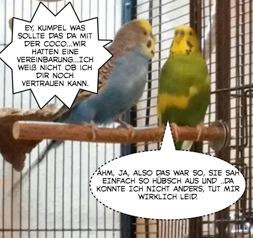 Streit zwischen Otto und Blansi