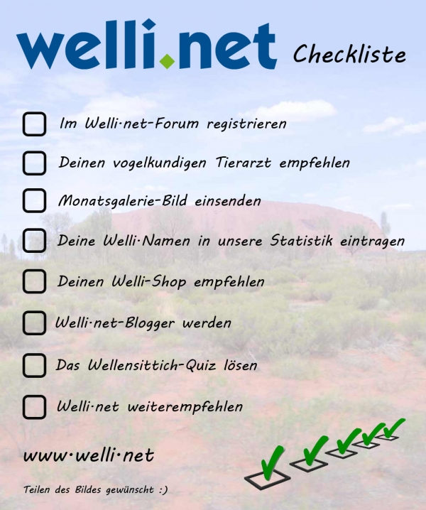 Welli.net Checkliste