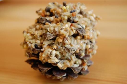 Welli-Keks in einem Kiefernzapfen