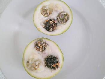Zucchini-Wellensittich