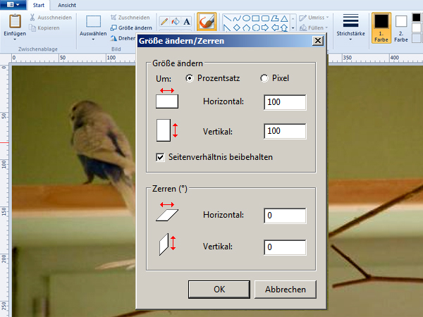Bildbearbeitung mit Windows Paint 6