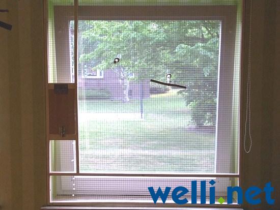 fenster f r wellensittiche sichern wellensittich portal. Black Bedroom Furniture Sets. Home Design Ideas