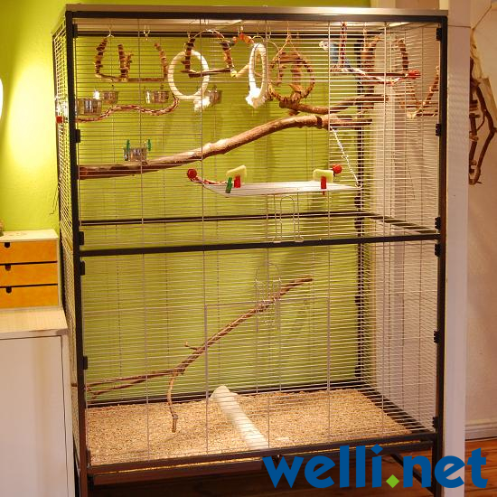 merkmale f r eine gute wellensittich voliere wellensittich portal. Black Bedroom Furniture Sets. Home Design Ideas