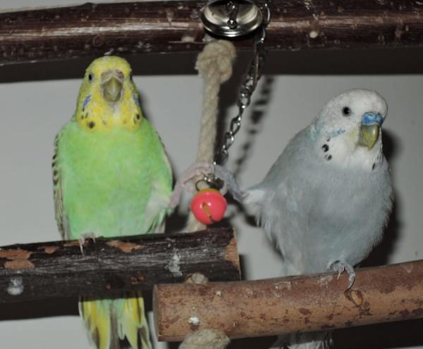 Karin und Rolf halten Händchen bzw. Füßchen