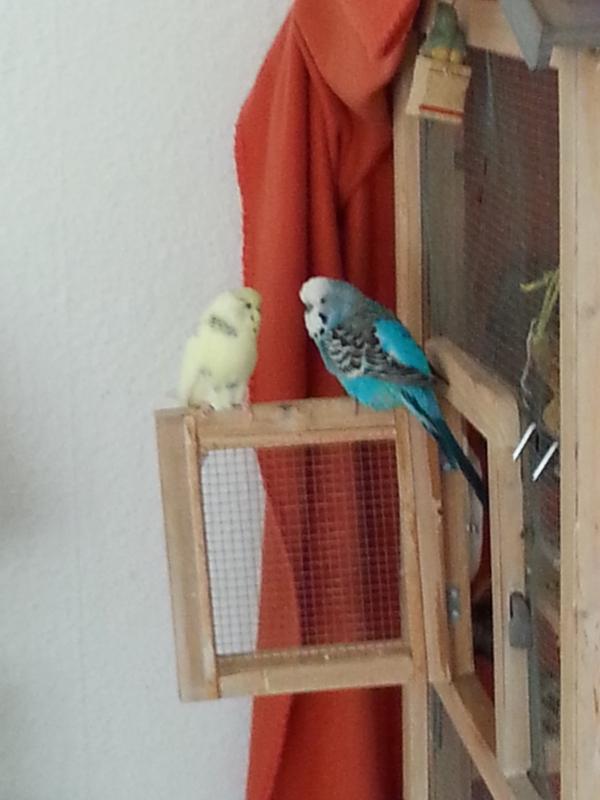 Beate und Hansi
