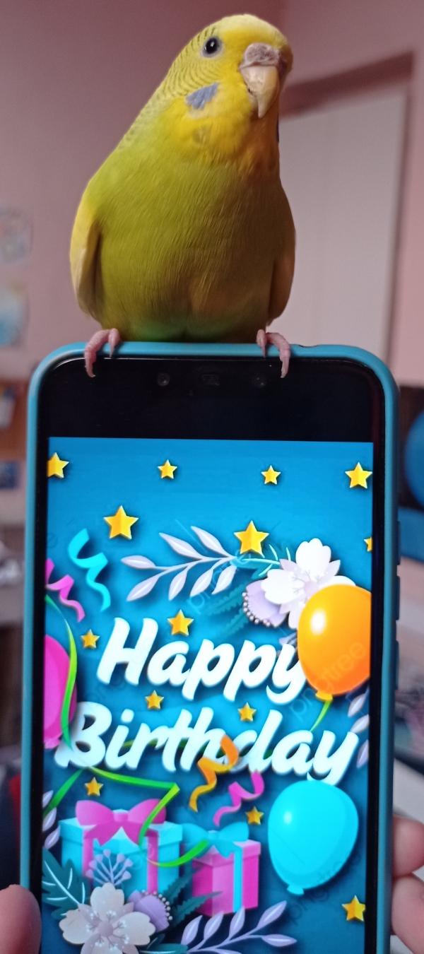 Heute hat Anny Geburtstag