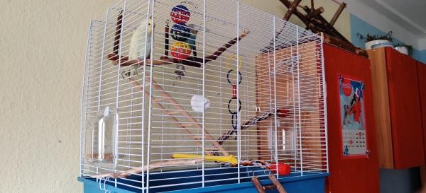 Der neue Käfig