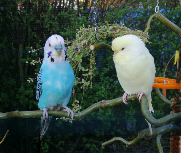 Olaf und Hildegard