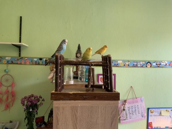 Yuki mit Freunden