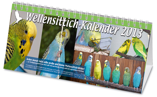 Wellensittich-Kalender 2013