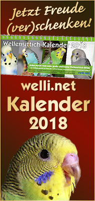 Wellensittichkalender 2018