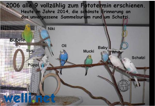 1. Platz der Geburtstagsgalerie von Carmen aus Frankfurt am Main