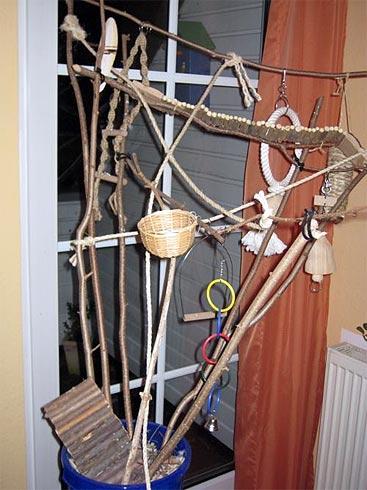 vogelbaum f r wellensittiche basteln wellensittich portal. Black Bedroom Furniture Sets. Home Design Ideas